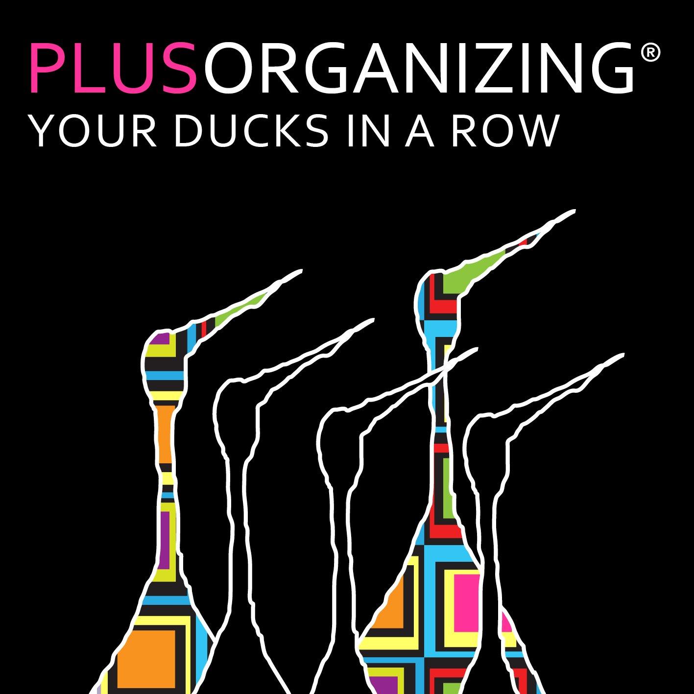logo Plusorganizing